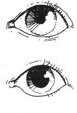 картинки сигналы глазами компания предлагает