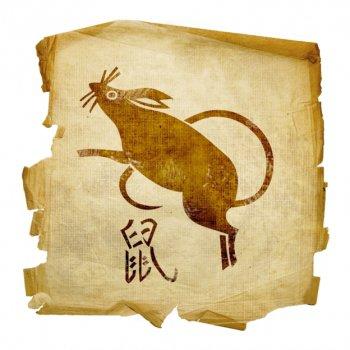 Крыса мужчмна в сексе