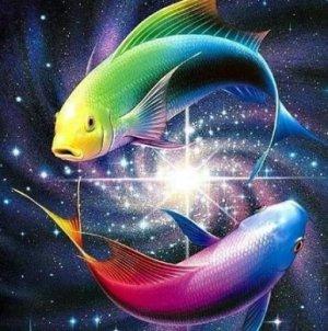 Рыбы и мужчины рыбы 16 августа 2013