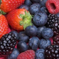 брага из ягод рецепт