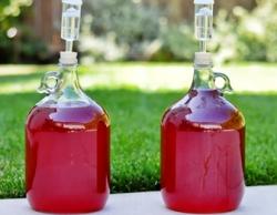 как приготовить брагу из ягод для самогона