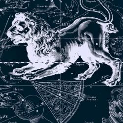 Женская натальная карта с Венерой во Льве